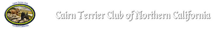 Rescue of Cairn Terrier Club of Northern California